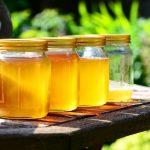 危険!お庭作業中などに突然飛び出してくる蜂のリスク