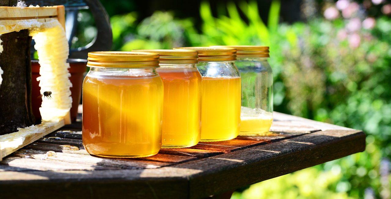 蜂に刺された場合のリスク